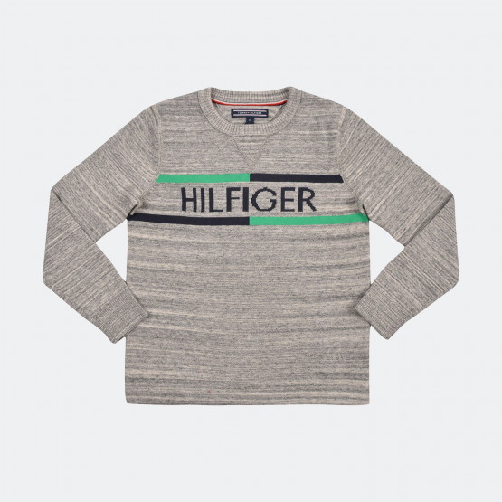 Tommy Jeans Ame Hilfiger Cn Sweater L/s