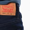 Levis Kid's Pants 520