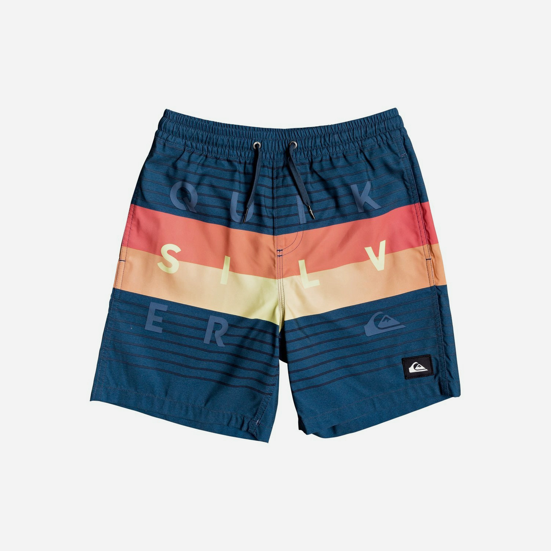 Quiksilver Word Block Men's Swim Shorts (9000050404_8113)